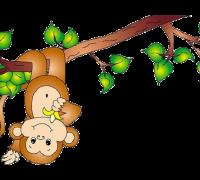 year-of-monkey